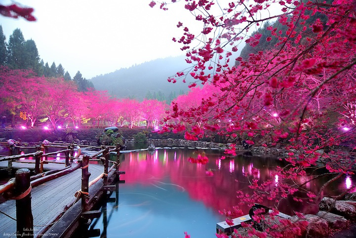 Du lịch TaiWan 5 ngày Cao Hùng, Đài Trung, Gia Nghĩa, Đài Bắc